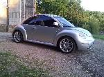 Beetle grise